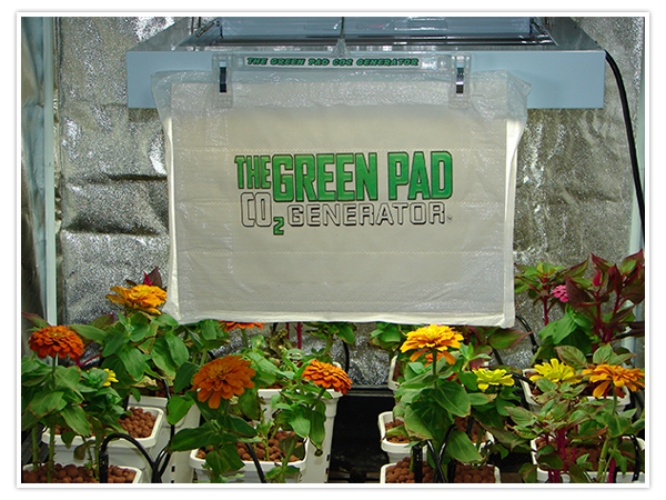The Green Pad – CO2 Generator | Hydroponic & Indoor
