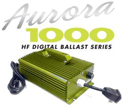 Aurora 1000 High Frequency Digital Ballast