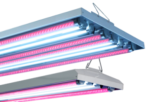 AgroLED LED/T5 HO Combination Fixtures