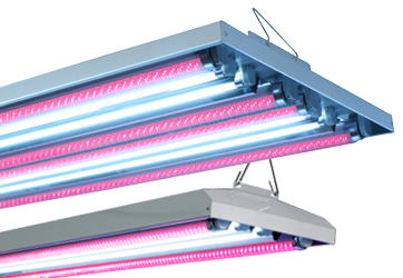 Agroled Led T5 Ho Combination Fixtures Hydroponic