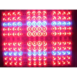 Apache Tech Red & Blue LED Grow Light