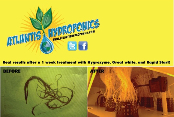 Atlantis Hydroponics