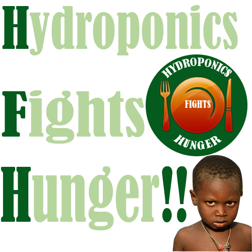 hydroponics-fights-hunger
