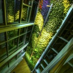 The-Currents-Living-Wall-Green-Over-Grey-15