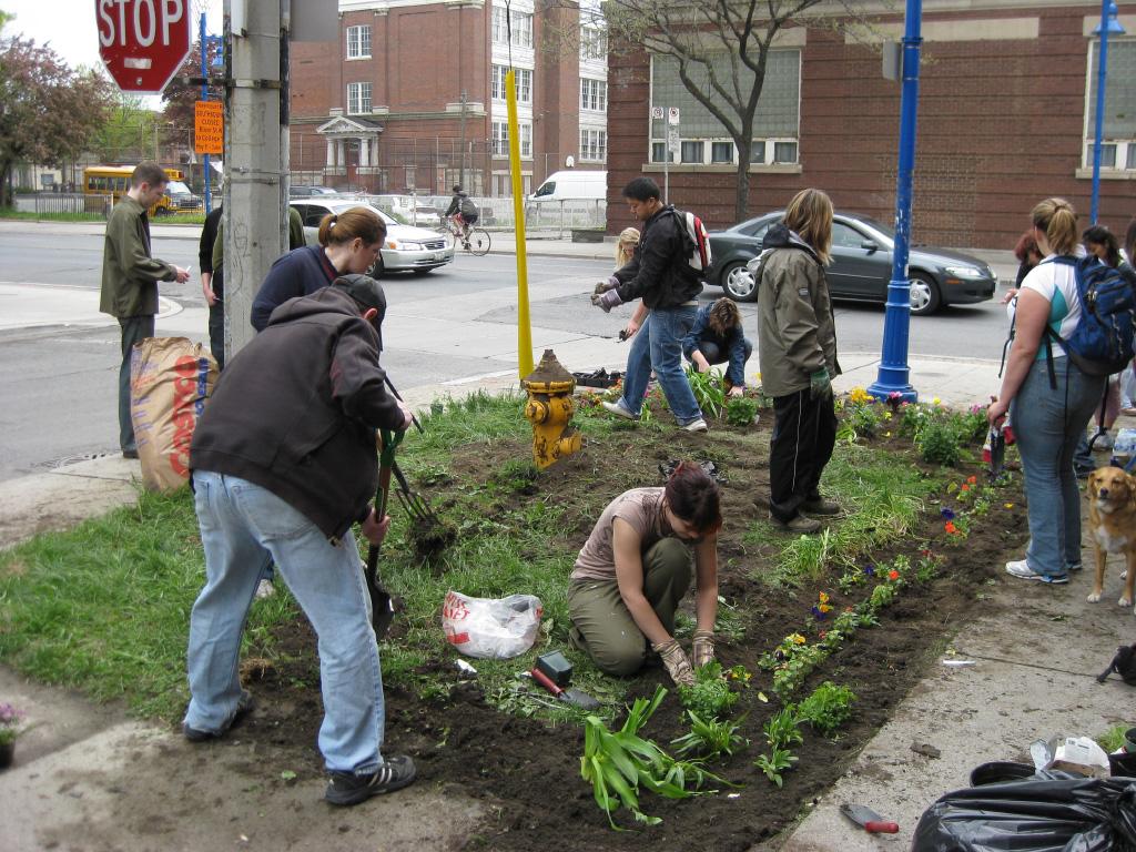 gurella gardening