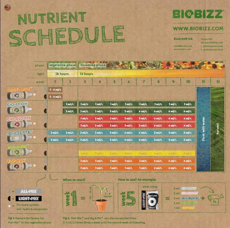Feeding chart car interior design for Fish feeding chart