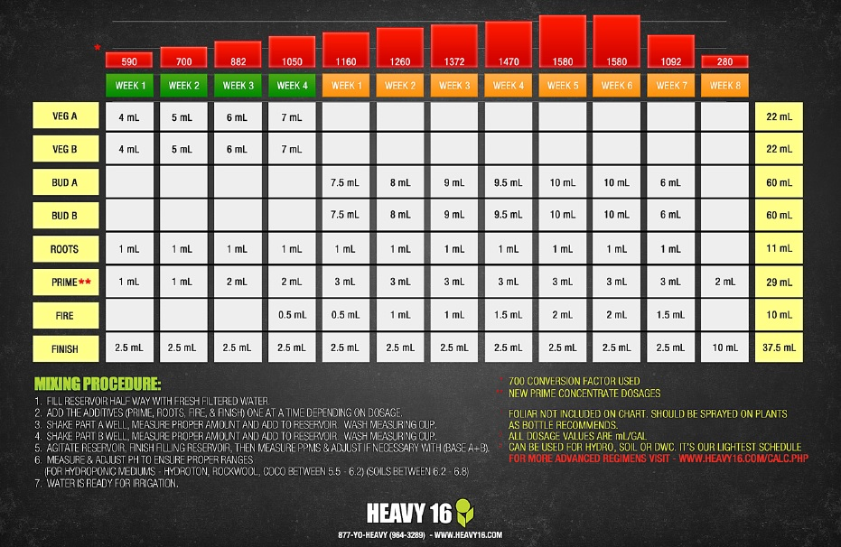 Heavy 16 Feeding Chart