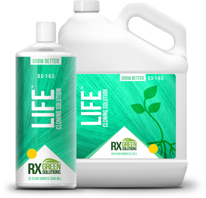 RX Green Solutions LIFE cloning solution