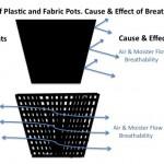 Fabric vs plastic plant pots