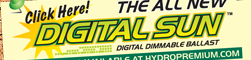 Digital Sun Digital Ballasts